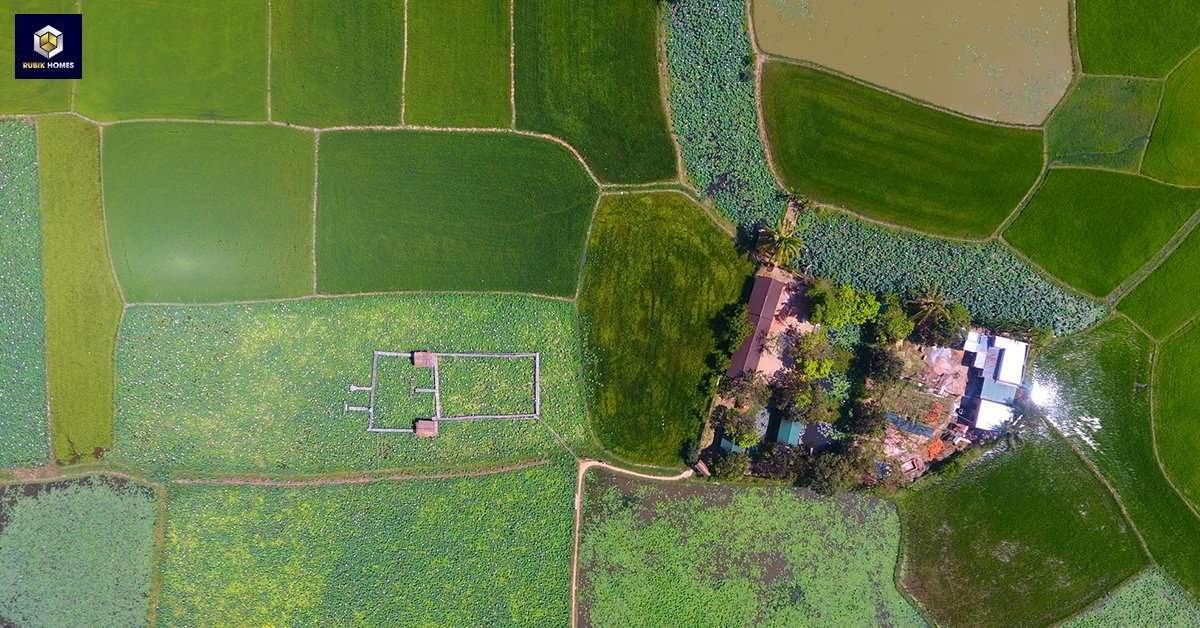 Hình ảnh khu đất nông nghiệp