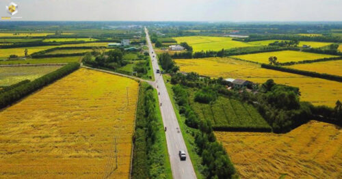 Phân biệt đất ở và đất vườn theo quy định của pháp luật hiện nay